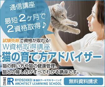猫の育て方資格取得